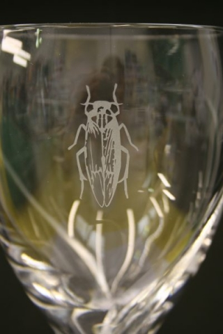 glass etching engraving Oxford London Witney