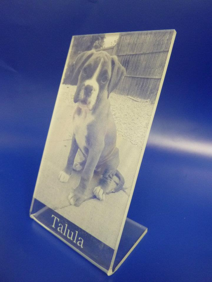 pets picture acrylic signs laser etched